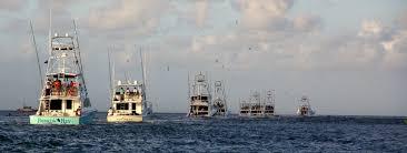 fishing guides port aransas galveston deep sea fishing charters offshore gulf of mexico