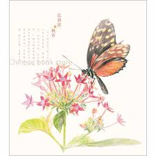 feile bird chinese coloring color pencil drawing books butterfly