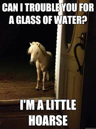 Gay Horse Meme - can i trouble you for a glass of water i m a little hoarse