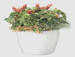 diy self watering herb garden self watering planters self watering pots diy self watering herb