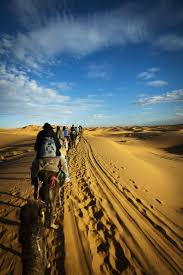 126 best desert images on pinterest nature dune and places