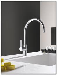 dornbracht tara ultra kitchen faucet sinks and faucets home