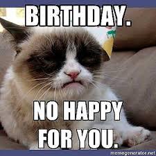 Cat Memes Generator - grumpy cat memes generator unblocked movies 66