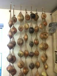 oignon dans la chambre utilisez de vieux collants pour ranger vos oignons faites des nœuds