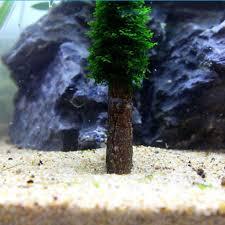 amazon com aquarium artificial moss christmas tree plant grow