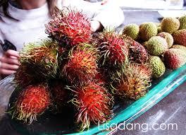 lychee fruit dang it delicious rambutans vs lychees in season now