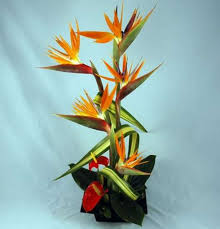 tropical flower arrangements flowers fresh tropical bouquets buy online kremp