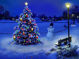 christmas tree farms in portland oregon beatiful tree