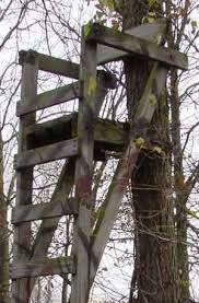 deer stand building plans this is my ladder stand i
