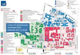 Spine Map Uke Medizinische Soziologie