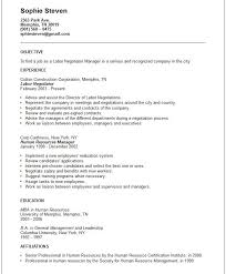 hybrid resume samples 165 resume examples generic resume objective generic resume