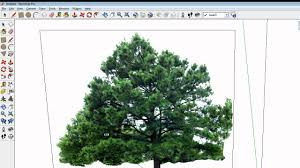 me component in sketchup a tree the