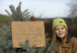 Christmas Tree Farm Va - charlotte wolff is seen with pet christmas tree at snickers gap