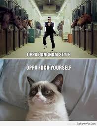 Gangnam Style Meme - oppa gangnam style cat meme cat planet cat planet