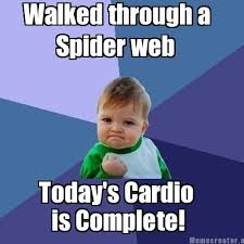 Cardio Meme - meme creator walked through a spider web today s cardio is