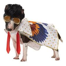 Halloween Costumes Dogs Cutest Puppy Costumes 2011 18 Halloween Pets Images Pet Costumes Animals