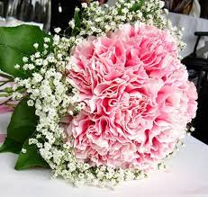 carnation bouquet baby s breath pink carnations bouquets carnations are so