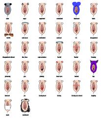 pop up market u2014 emoji art u0026 design show
