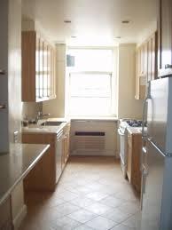 Galley Kitchen With Island Layout Kitchen Design Ideas Kitchen Stunning Galley Remodel Ideas New