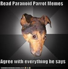 read paranoid parrot memes the gear page