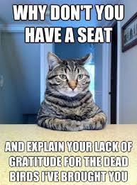Gratitude Meme - funny cat meme
