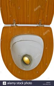 golden egg in the toilet stock photo royalty free image 15226091