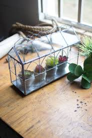 and wire terrarium