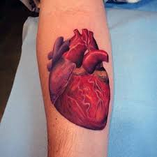 34 anatomical heart tattoos with strong meanings tattoos win