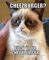 Cheezburger Meme Maker - grumpy cat can t haz cheezburger meme maker make a meme online
