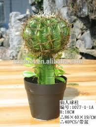 mini plants mini hx011502 artificial cactus plant for desk kit buy outdoor