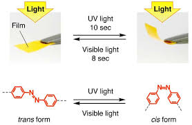 Visible Light Examples Photosensitive Film Converts Light Into Kinetic Energy Bends When