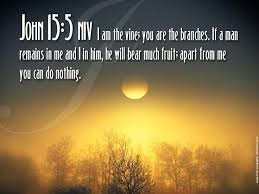 bible quotes magnificent best 25 bible verses about