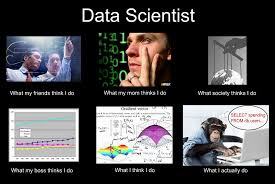 Network Engineer Meme - how to become a data scientist