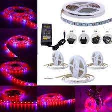 12v dc led grow lights smd 5050 led strip grow light l full spectrum for plant veg dc