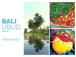mini carnet de note nowmadnow u2013 que faire à ubud carnet de voyage à bali