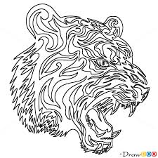 how to draw growling tiger tribal tattoos