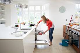 how to clean cupboards after pest how do you clean up after pest acmepestsolutions