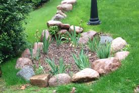 rain gardens provide attracting drainage solutions in williams bay wi