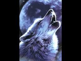 type o negative wolf moon