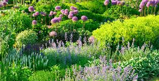 turf and ornamental program buckeye power sales