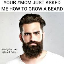 How Meme - beard meme the best largest selection of beard memes online