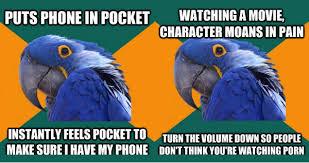 Paranoid Parrot Memes - best of the paranoid parrot meme 20 pics weknowmemes