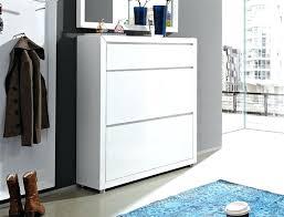 White Shoe Storage Cabinet Venetia Shoe Storage Cabinet White Shoe Cabinet With Storage
