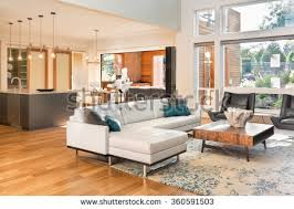 luxury homes interior pictures beautiful living room luxury home stock photo 159028481
