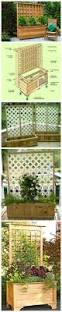 Patio Home Plans by Outdoor Covered Patio Plastic Pots Happy Together Plants