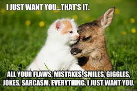 Just For You Meme - i just want you cat meme cat planet cat planet