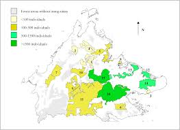 Malaysia On A Map Aerial Surveys Give New Estimates For Orangutans In Sabah Malaysia