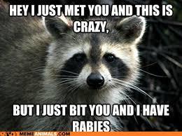 Funny Memes Animals - image advice animals memes untitled1 jpg animal jam wiki
