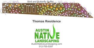 austin texas native plants austin wildscape landscaping for wildlife hummingbirds