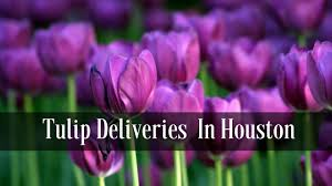 houston flower delivery flower delivery houston pink tulips for delivery